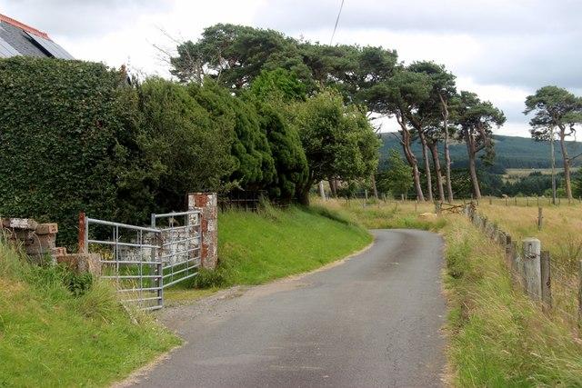Pines at Peelhill