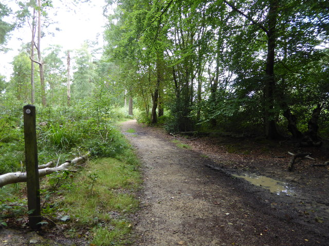 Serpent Trail heads west through Ridge Plantations