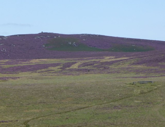 View from cairn on Landshot Hill
