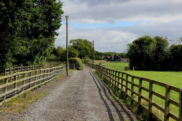 Access Lane to Cow Moor Farm