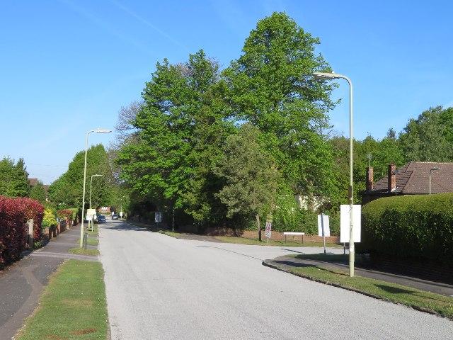 Resurfacing Napoleon Avenue