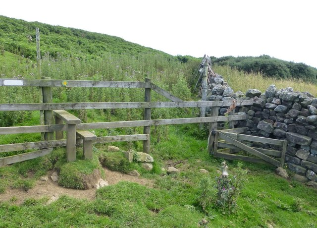 Stile and sheep gate
