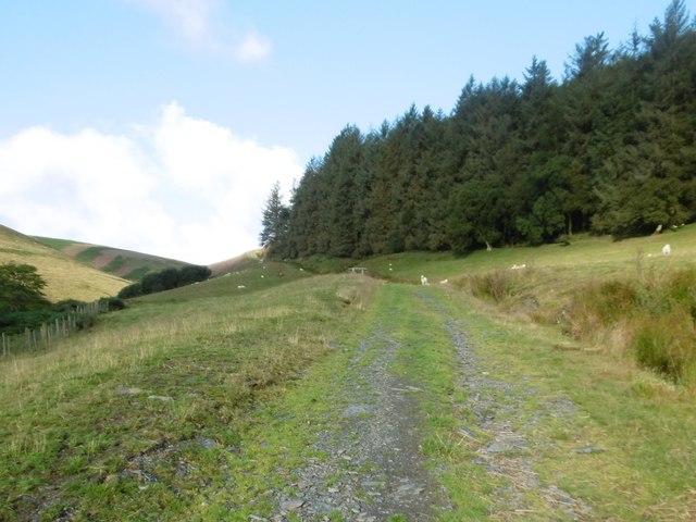 Llanarmon Dyffryn Ceiriog, farm track