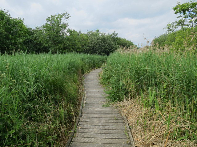 Boardwalk, Ranworth Broad