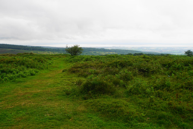 The top of Lydeard Hill