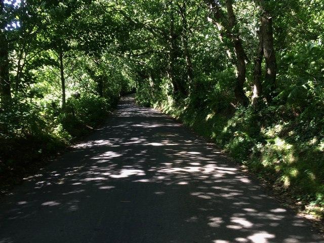 Apse Manor Road, near Shanklin