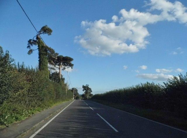 Thame Road heading for Thame