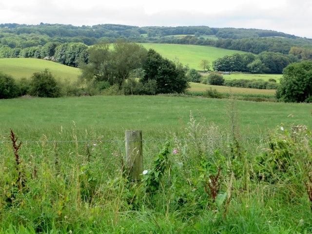 Rural landscape near Appley Bridge