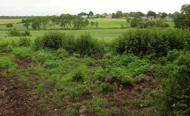Farmland near Lytes Cary