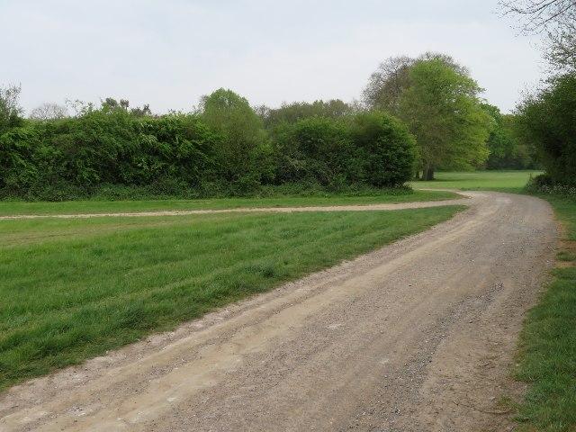 Farm track by Southwood Farm