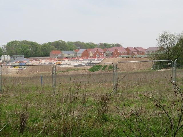 The relentless growth of Basingstoke