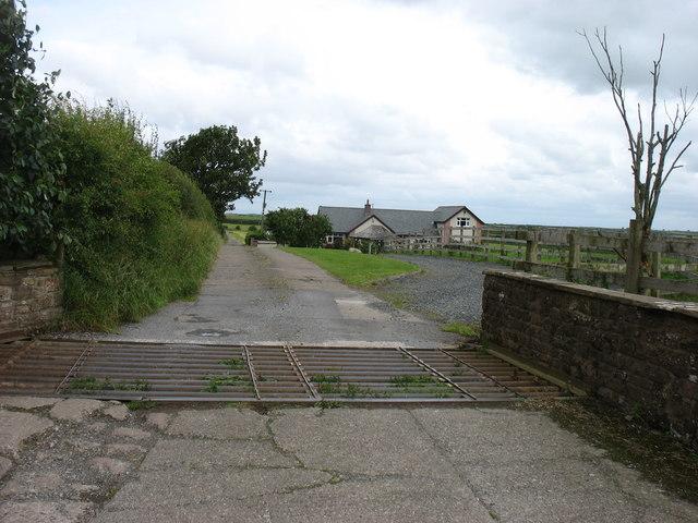 The drive to Brownrigg Hall Farm