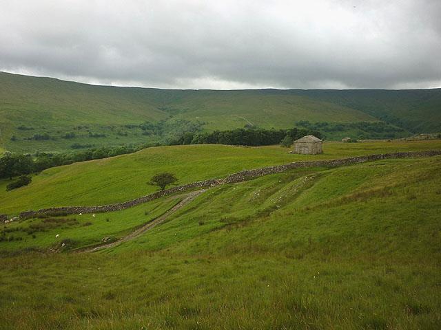 Rough pasture above Scar House