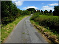 H6359 : Killymorgan Road by Kenneth  Allen