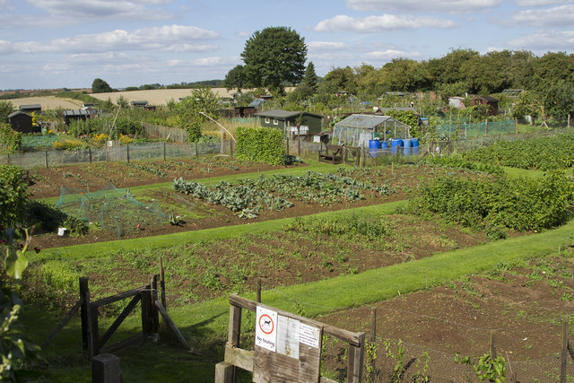 Brixworth Allotments