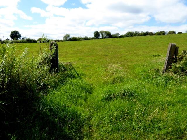 An open field, Killymorgan