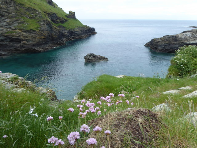 Cliff top above Tintagel Haven