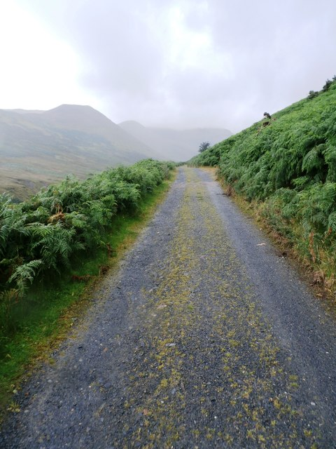 Track in Coledale