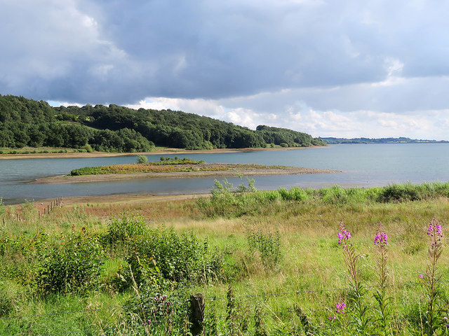Near the north end of Carsington Water