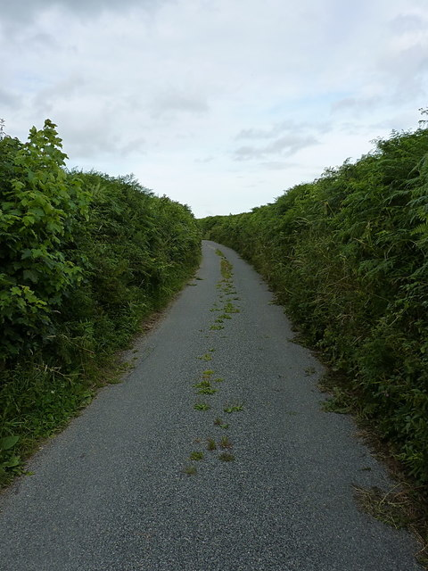 Chelson Lane on Harcombe Hill