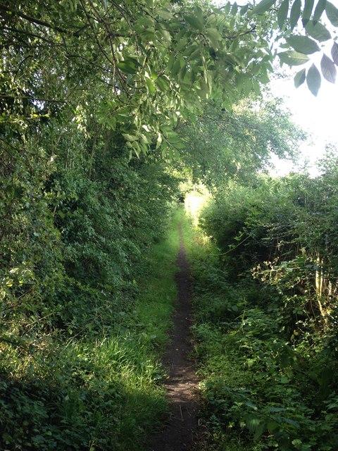 Footpath towards Desford