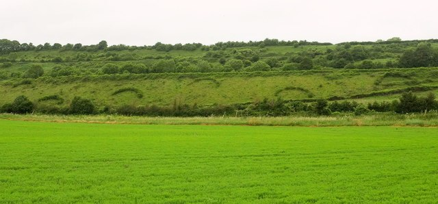 Railway embankment above the Cary valley