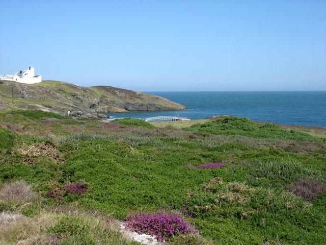 The east coast of Point Lynas (Trwyn Eilian)