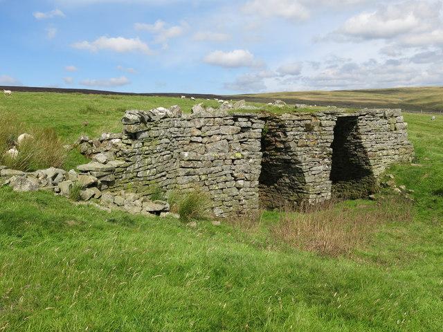 Lime kiln east of Clarty Lane (2)