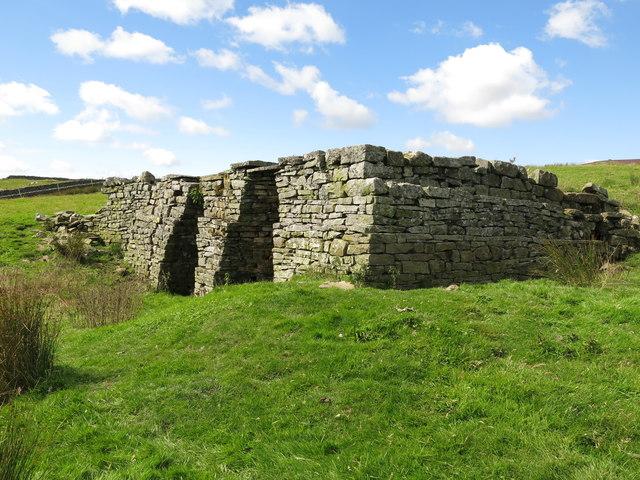 Lime kiln east of Clarty Lane (3)