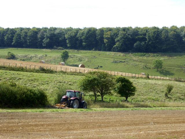 Mowing a field margin