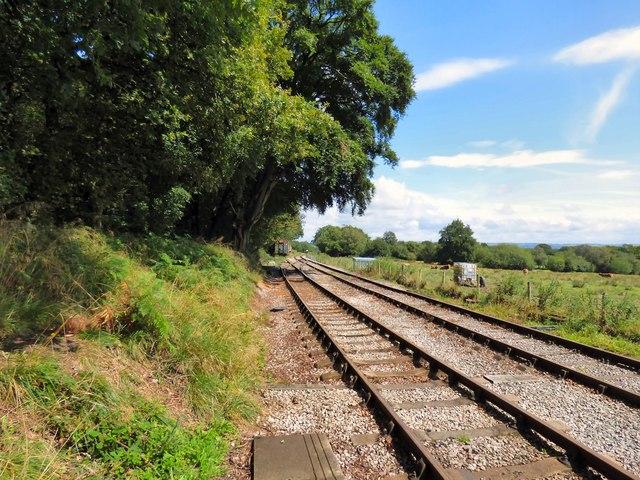 Foxfield Railway beyond Dilhorne Park