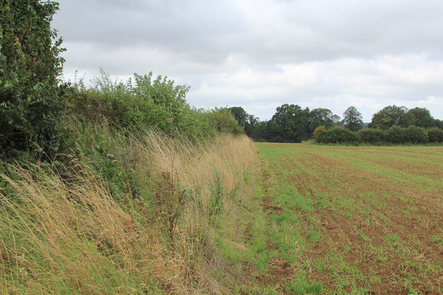 Field beside the Road to Kirkham