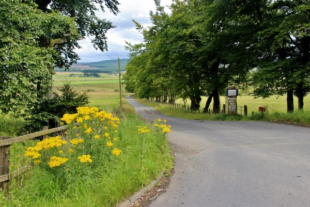 Access road to Avonside