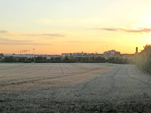 Towards Addenbrooke's at sunset