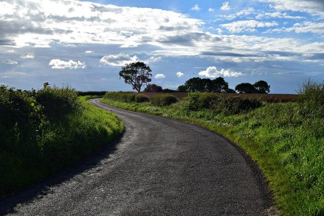 S-Bend on Ingram Lane