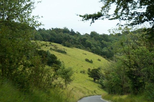 The Zig Zag Road on Box Hill