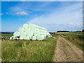 NY8956 : Silage bales beside farm and estate road by Trevor Littlewood