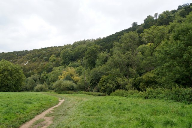 The west side of Box Hill