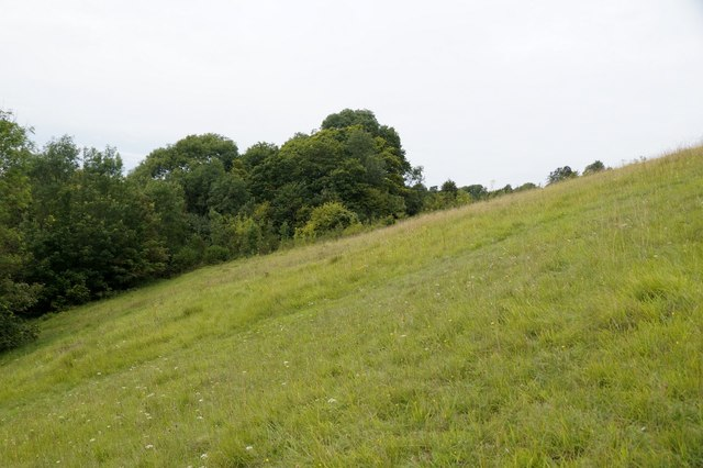 North-west slopes of Box Hill