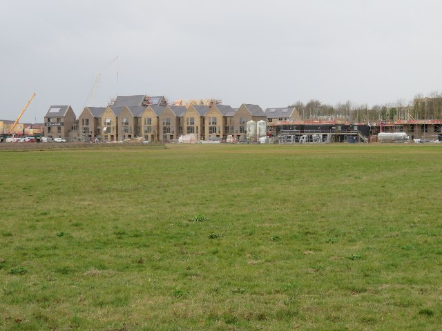 Houses in Hobson Avenue