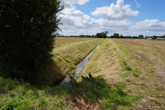 Drain on Riccall Common
