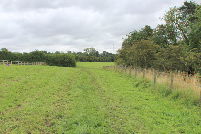 Bridleway heading East from Menethorpe
