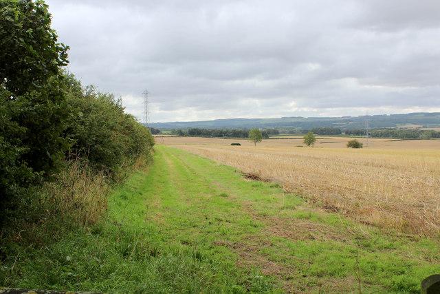 Countryside off Menethorpe Lane