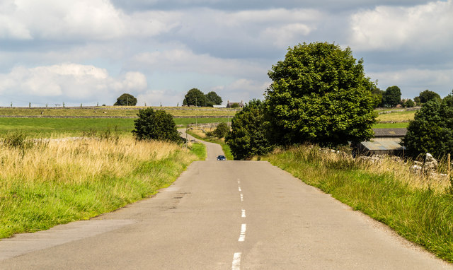 Johnson Lane