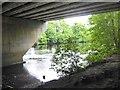 NZ2413 : Underneath the motorway bridge by Oliver Dixon