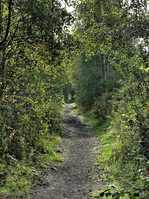 Footpath alongside disused Railway Line