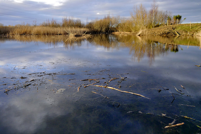 Small pond RSPB Old Moor