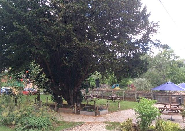 Pub garden of the Bull, Streatley Hill