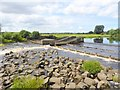 NZ2513 : Weir on the River Tees at Low Coniscliffe by Oliver Dixon