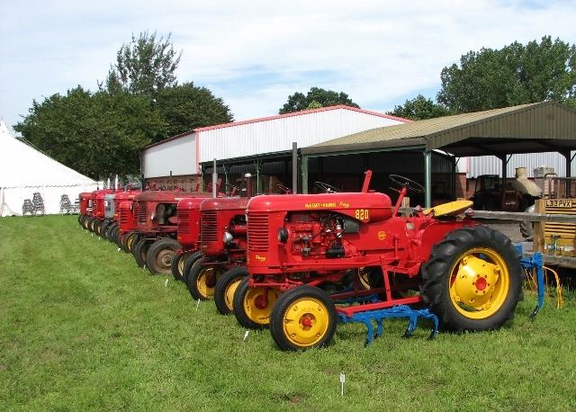 Line-up of 1950s Massey Ferguson Pony tractors